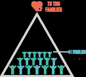 TNS 41 Families