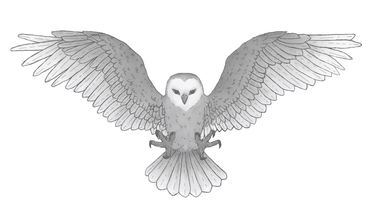 TNS Owls Ultimate