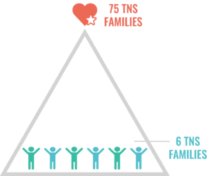 TNS Families Triangle